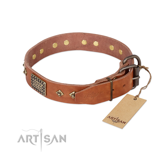 Walking natural genuine leather collar with studs for your doggie