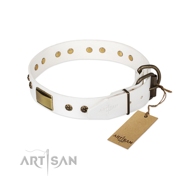 Everyday walking full grain leather collar with studs for your pet