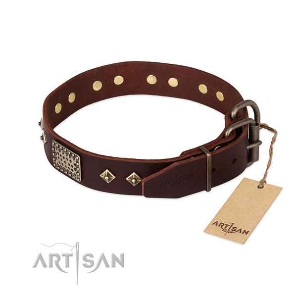 Stylish walking genuine leather collar with embellishments for your doggie