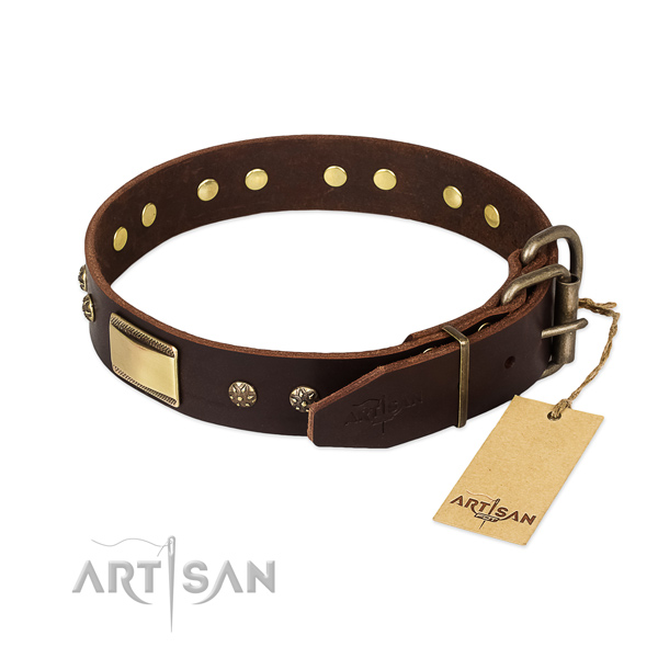 Daily walking full grain leather collar with embellishments for your four-legged friend