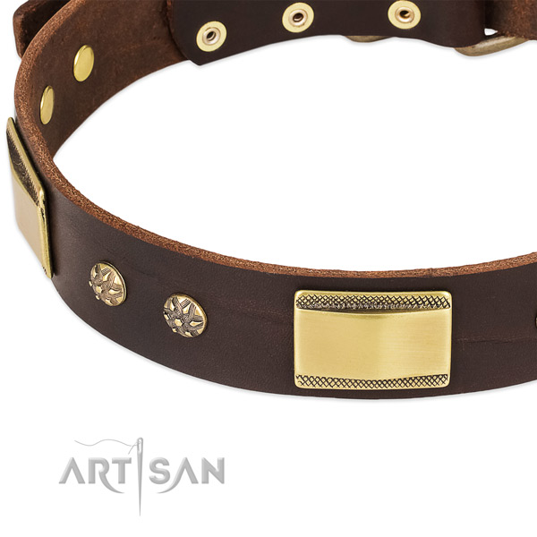 Daily walking full grain leather collar with rust-proof buckle and D-ring