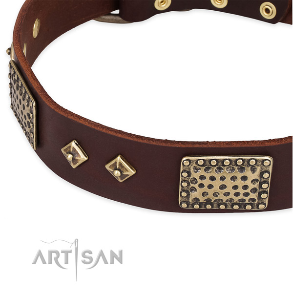 Daily walking genuine leather collar with rust-proof buckle and D-ring
