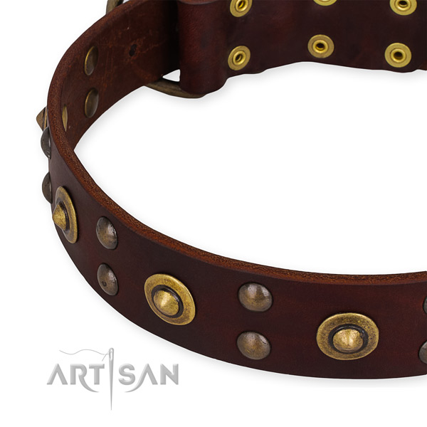 Adjustable leather dog collar with resistant rust-proof set of hardware