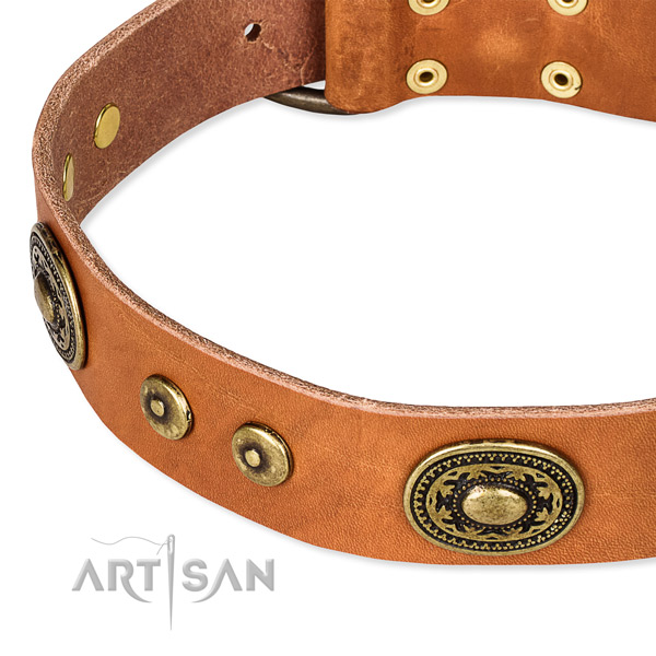 Snugly fitted leather dog collar with extra strong rust-proof fittings