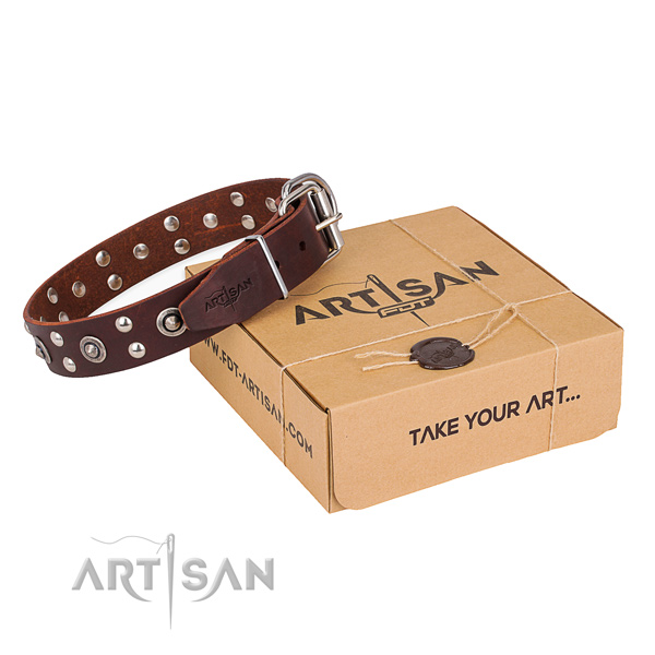 Designer genuine leather dog collar for stylish walks