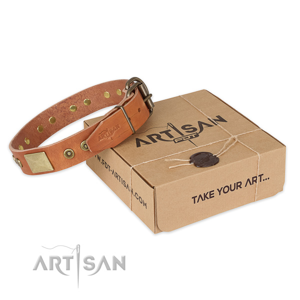 Designer full grain leather dog collar for everyday use
