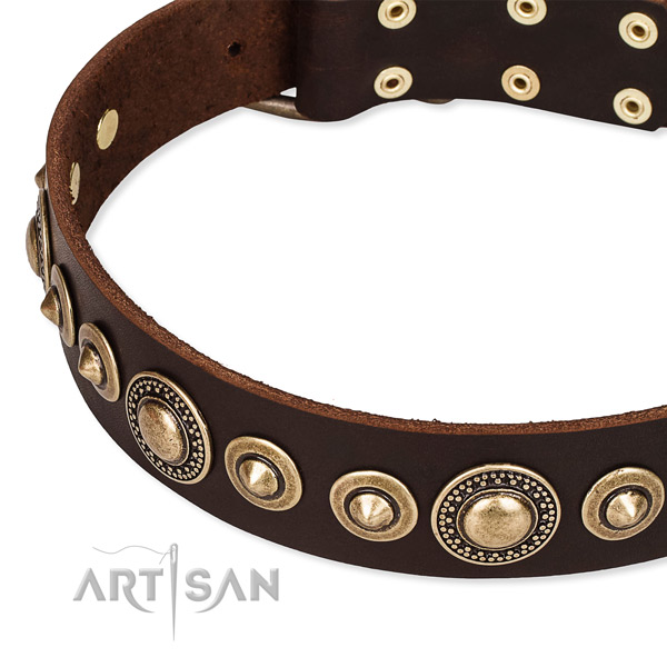 Snugly fitted leather dog collar with almost unbreakable durable fittings