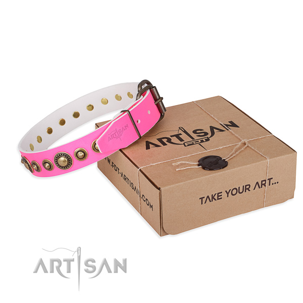 Trendy leather dog collar for walking in style