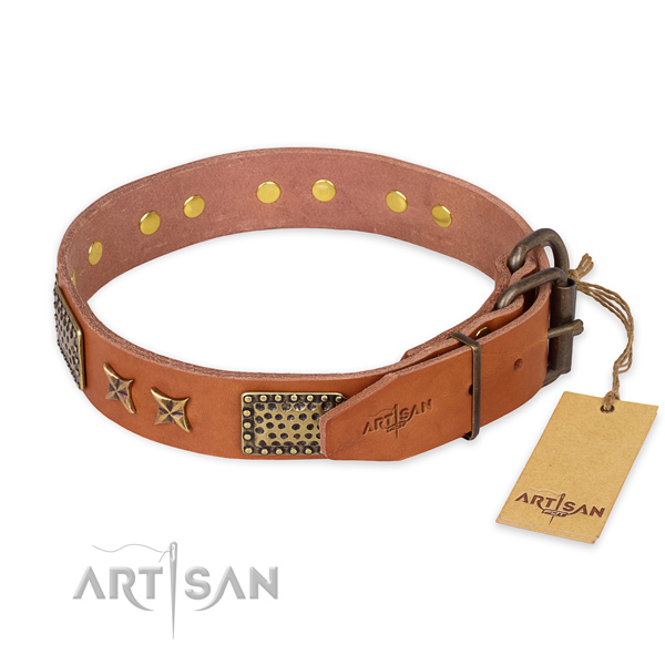 Everyday walking full grain natural leather collar with adornments for your pet