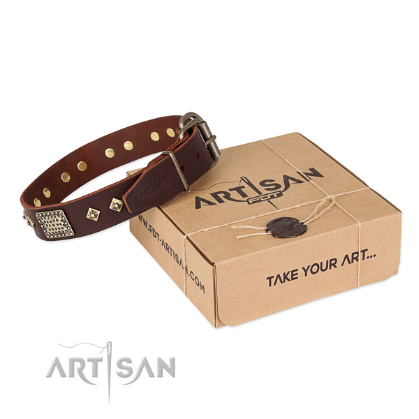 Fine quality full grain leather dog collar for everyday walking