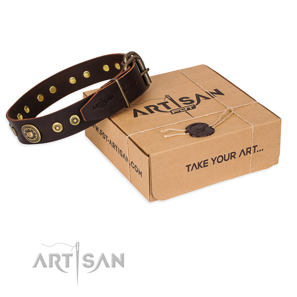 Finest quality full grain genuine leather dog collar for everyday walking