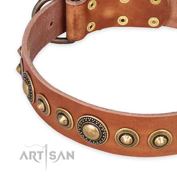 Quick to fasten leather dog collar with extra sturdy old bronze-like plated set of hardware