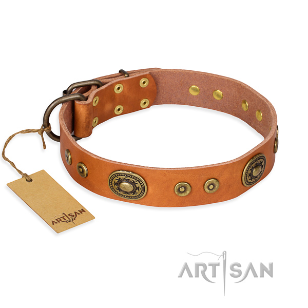 Resistant leather dog collar with strong hardware