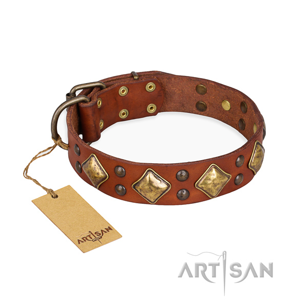 Extraordinary design embellishments on genuine leather dog collar