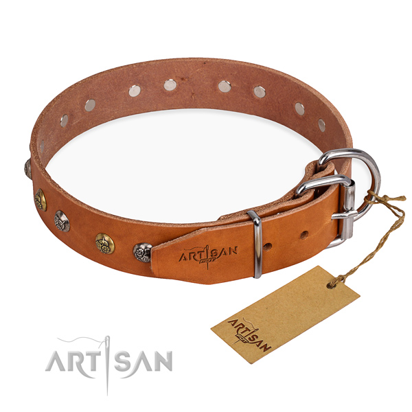 Everyday leather collar for your beloved pet