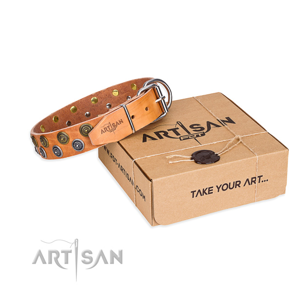 Trendy full grain natural leather dog collar for stylish walks