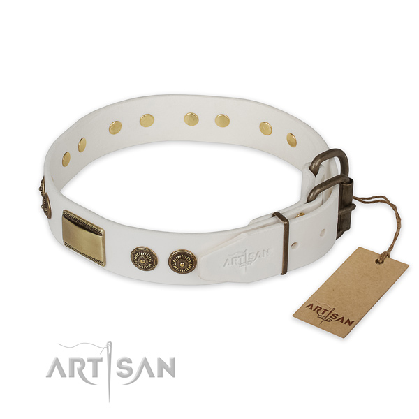 Daily use genuine leather collar with studs for your dog