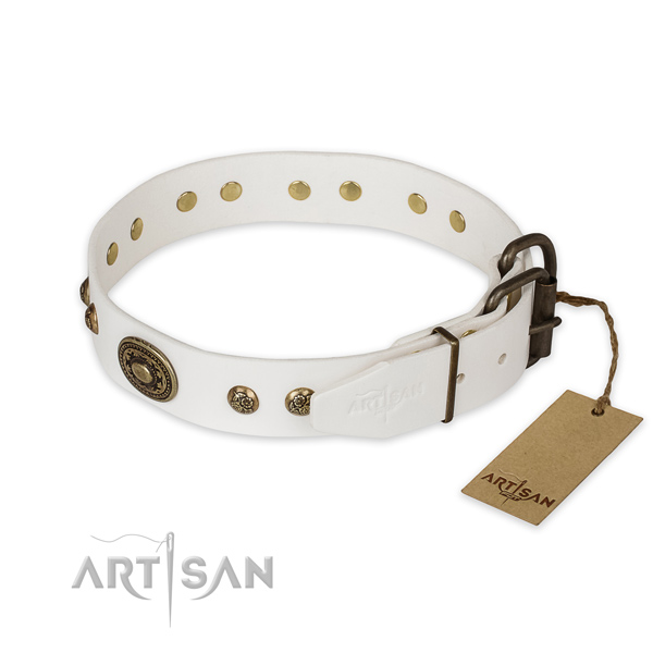 Daily walking full grain genuine leather collar with embellishments for your pet