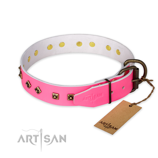 Daily use leather collar with embellishments for your four-legged friend