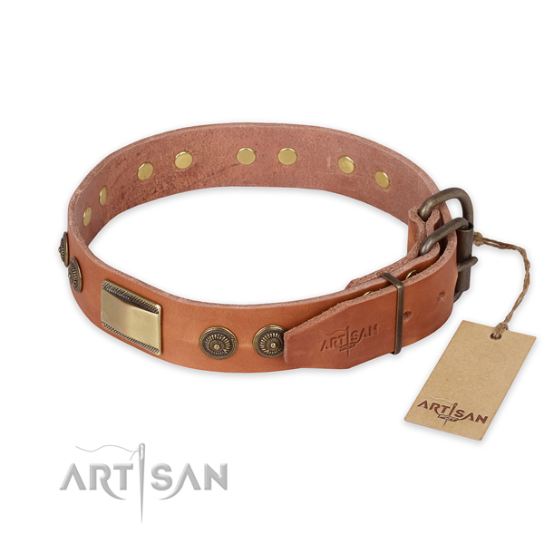 Everyday walking full grain leather collar with embellishments for your four-legged friend