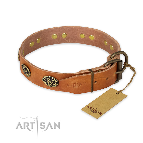 Daily use leather collar with adornments for your pet