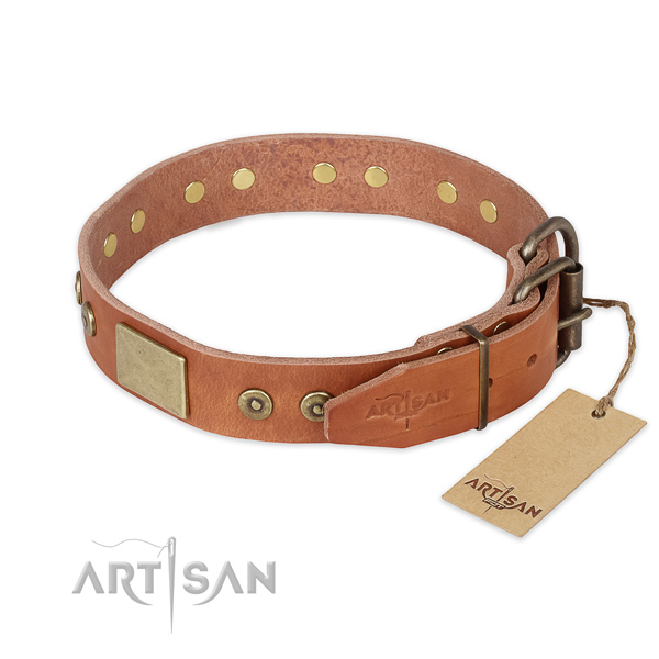 Walking genuine leather collar with embellishments for your pet