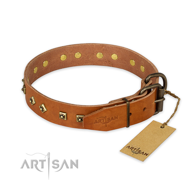 Everyday use genuine leather collar with studs for your four-legged friend