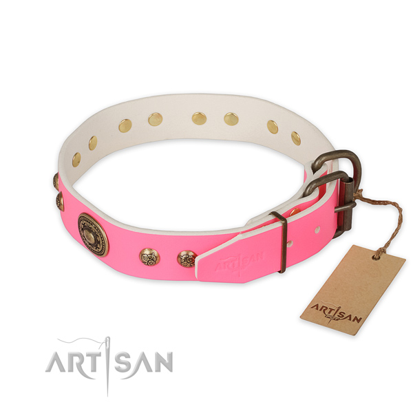Daily walking full grain leather collar with studs for your pet
