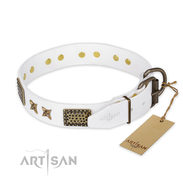 Everyday use full grain natural leather collar with embellishments for your doggie