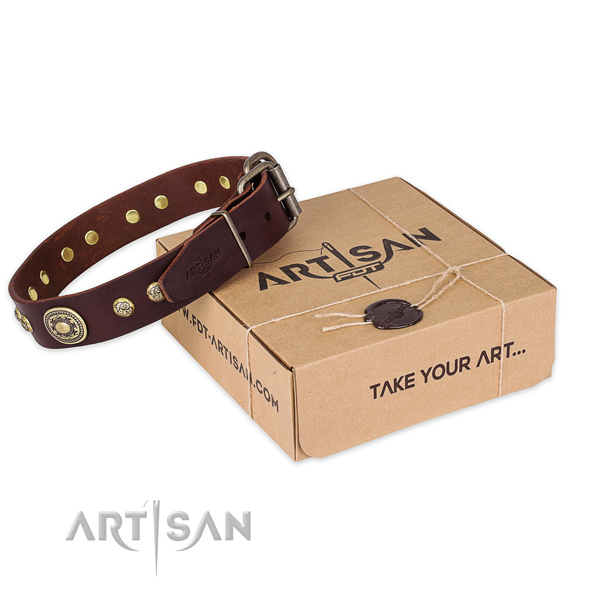 Trendy natural genuine leather dog collar for stylish walking