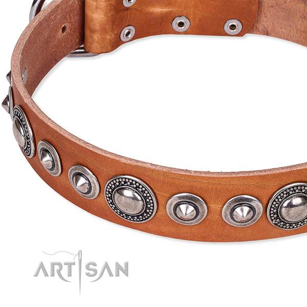 Easy to adjust leather dog collar with extra strong chrome plated set of hardware