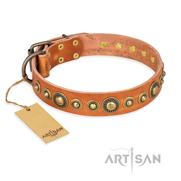 Heavy-duty leather dog collar with reliable fittings