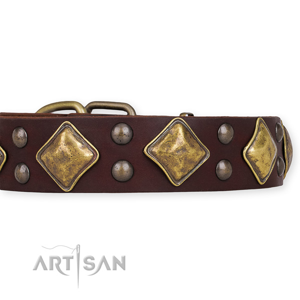 Adjustable leather dog collar with resistant to tear and wear brass plated fittings