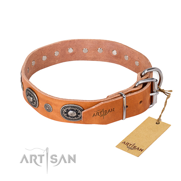 Tear-proof leather collar for your stunning dog