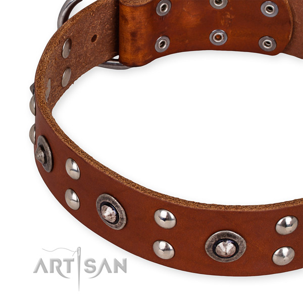 Quick to fasten leather dog collar with extra strong brass plated buckle and D-ring