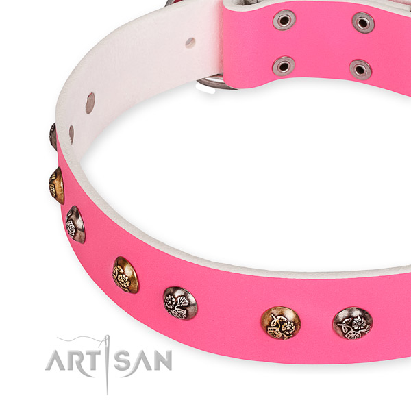 Easy to put on/off leather dog collar with resistant non-rusting buckle and D-ring