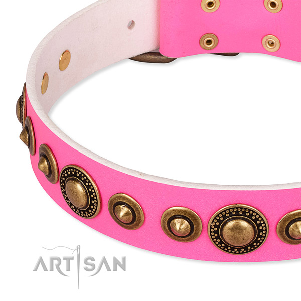 Snugly fitted leather dog collar with resistant non-rusting hardware