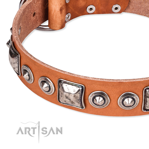 Easy to adjust leather dog collar with almost unbreakable rust-proof fittings