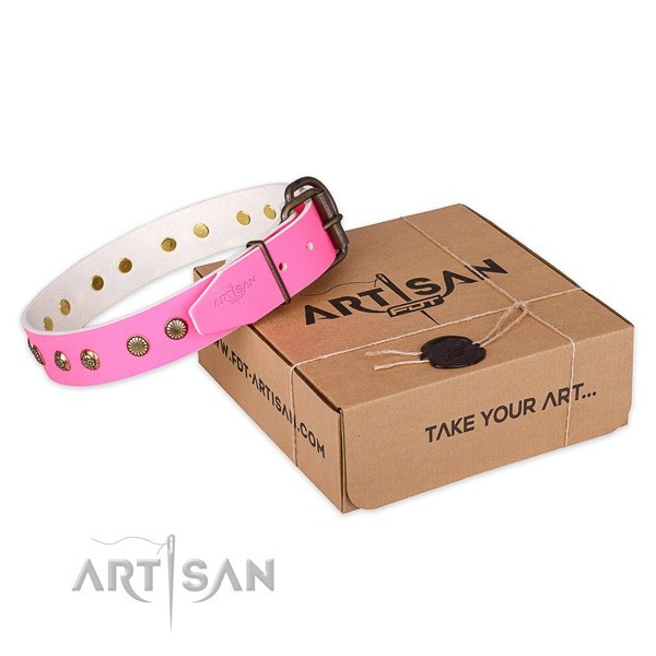 Trendy leather dog collar for everyday use