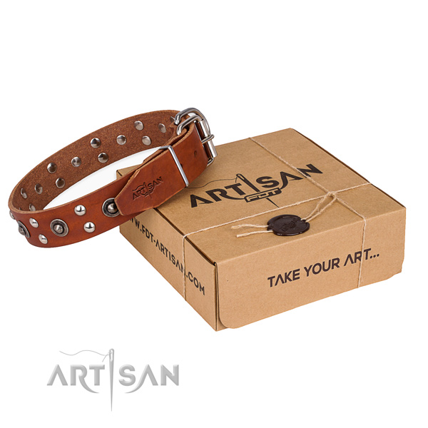Finest quality full grain genuine leather dog collar for walking