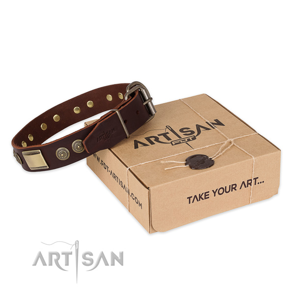 Top quality natural genuine leather dog collar for walking in style