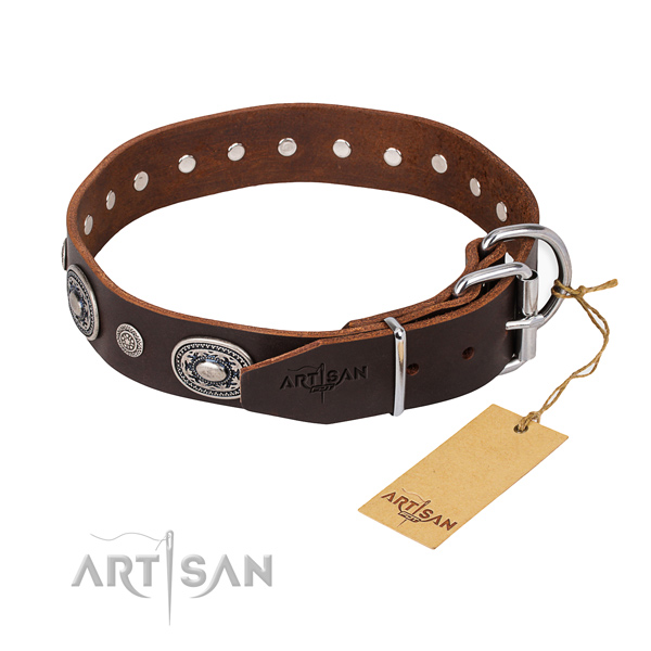 Versatile leather collar for your beloved dog