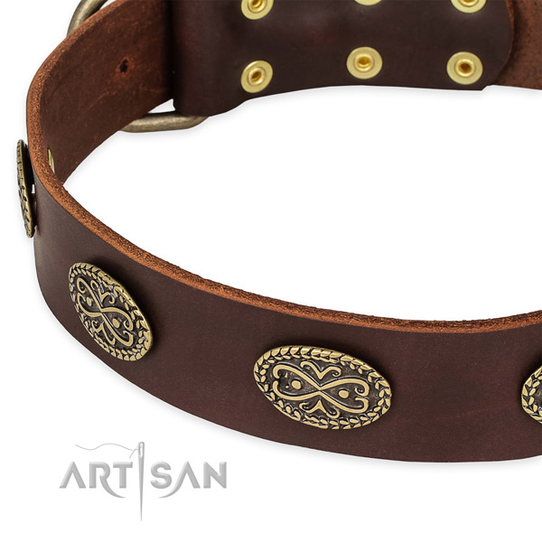 Easy to use leather dog collar with resistant to tear and wear rust-proof buckle and D-ring