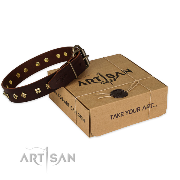 Incredible genuine leather dog collar for stylish walks