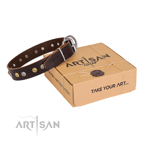 Trendy full grain genuine leather dog collar for everyday use