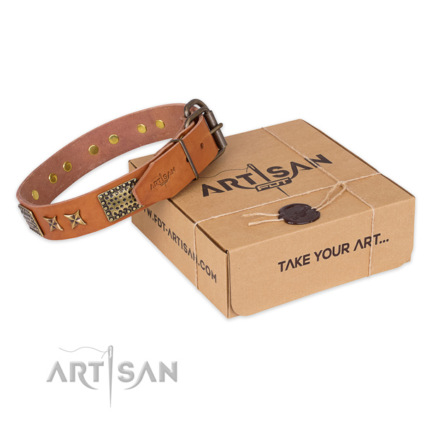 Incredible natural genuine leather dog collar for walking in style