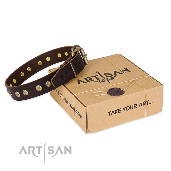 High quality genuine leather dog collar for stylish walking