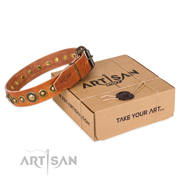 Incredible full grain natural leather dog collar for everyday use