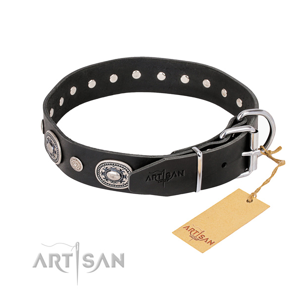 Durable leather collar for your beloved four-legged friend