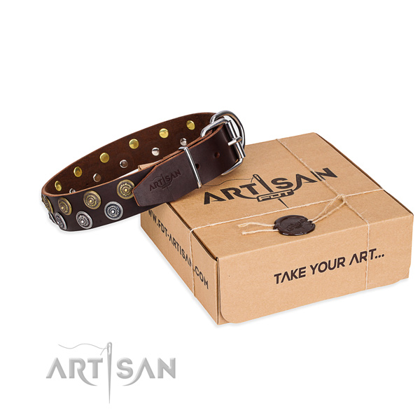 Casual style leather dog collar with luxurious adornments